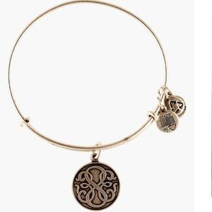 🧨LAST CHANCE🧨 Alex and Ani Path of Life Bangle